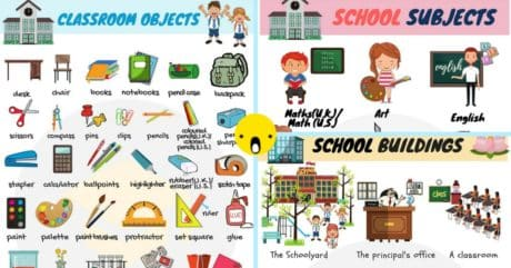 School Vocabulary in English | Words Related to School 145