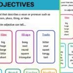 Adjectives: What is An Adjective? Useful Rules & Examples