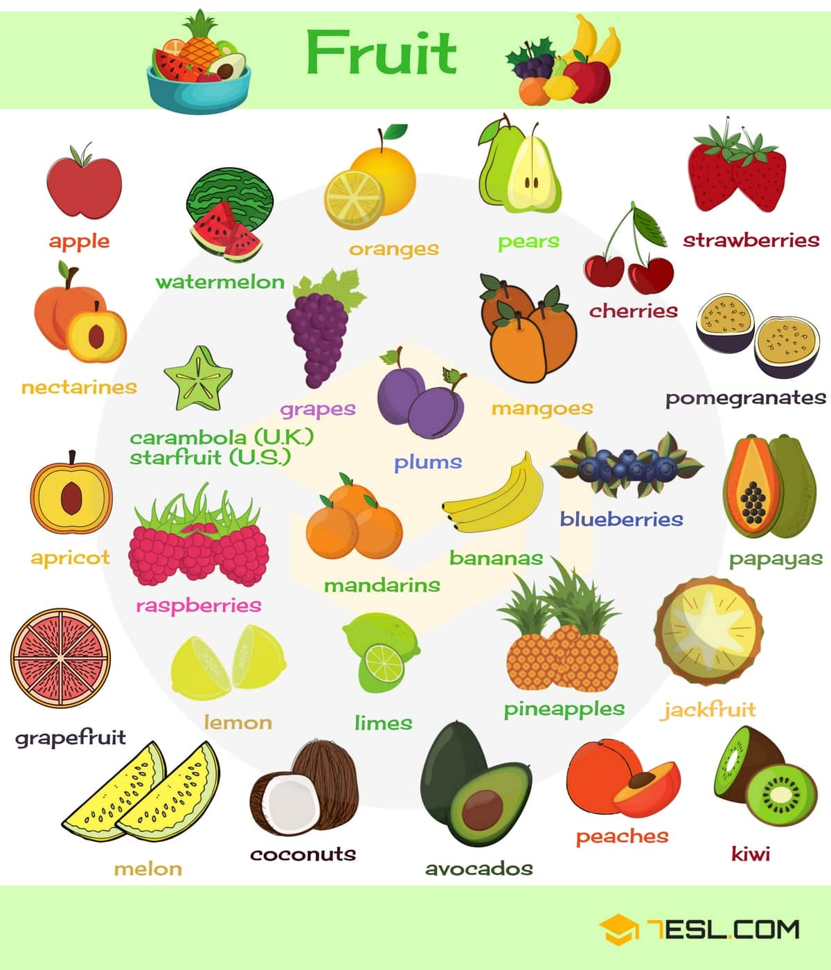 Fruits Vocabulary | Image