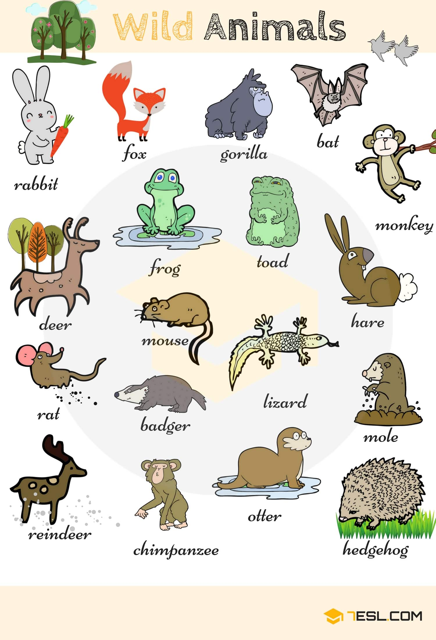 Learn Animal Names in English 5