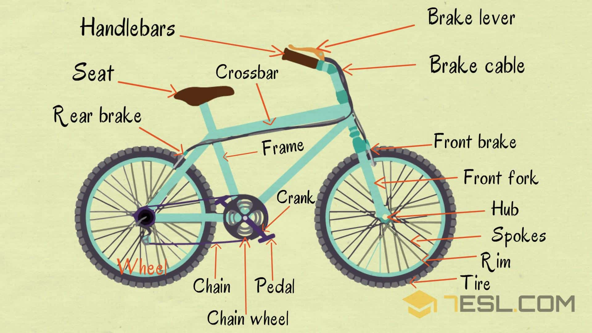 Bicycle Parts: Useful Parts of a Bike with Pictures