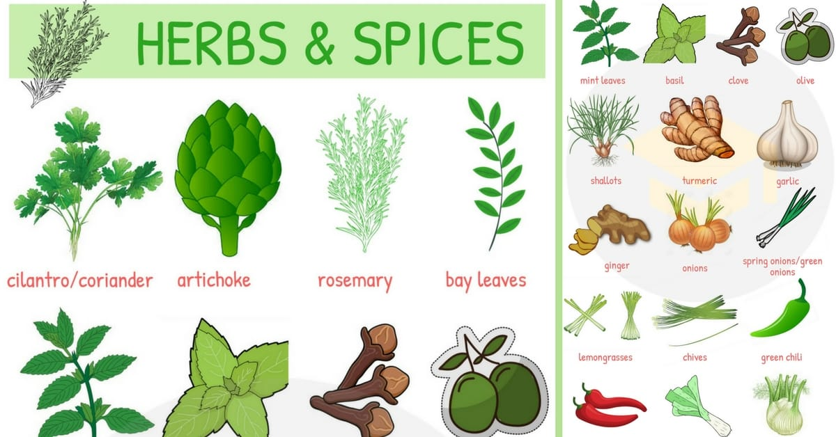 List of Herbs and Spices | Names of Spices and Herbs 1