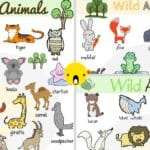 Wild Animals: List of Wild Animal Names with Images