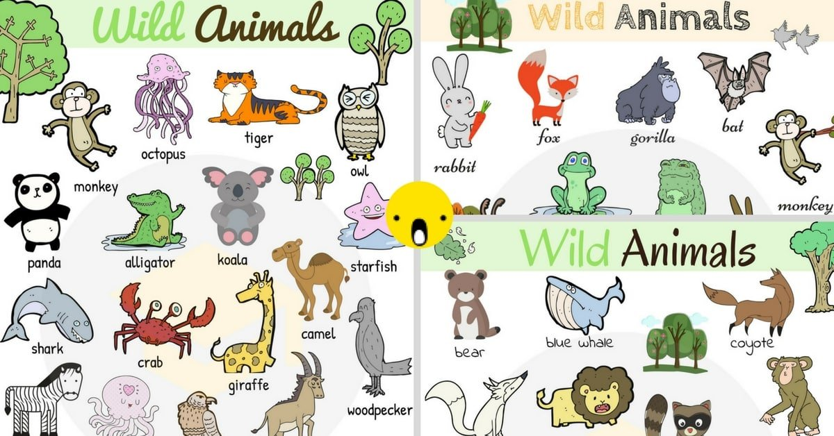 Wild Animals Vocabulary In English Learn Animal Names 1