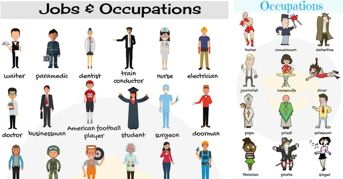 Jobs and Occupations Vocabulary | List of Jobs in English 51