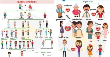 Family Members Vocabulary in English | Family Members Tree 211