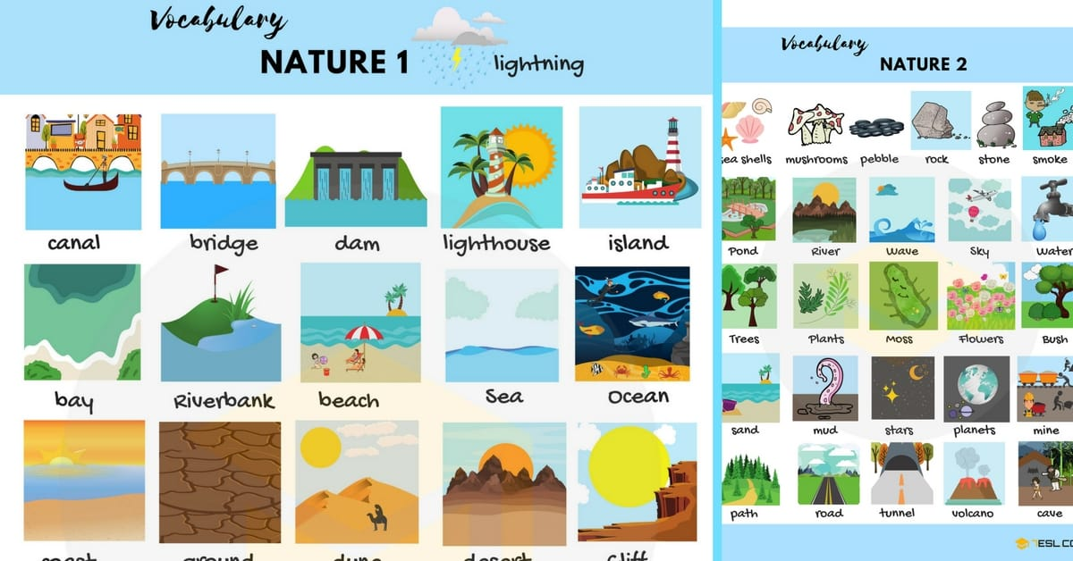 Nature Vocabulary in English | The Natural World 184