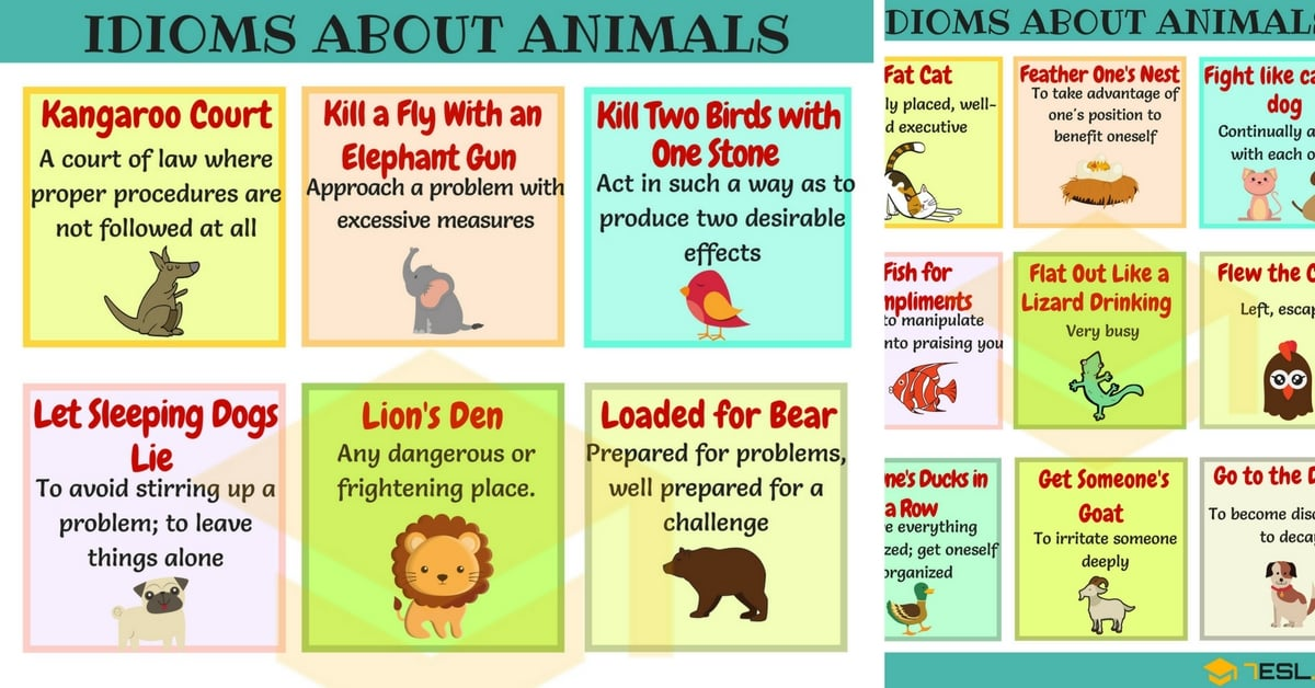 List Of Idioms About Animals In English F To Y Animal Idioms 7