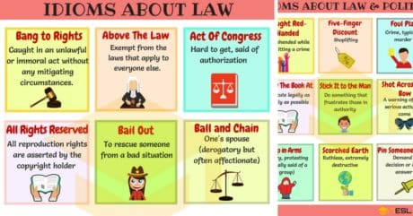 Commonly Used Idioms about Law and Politics in English 43