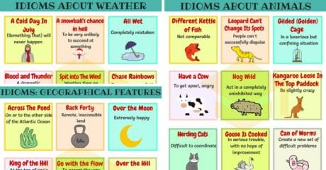 Common Nature Idioms in English with Meaning and Examples 32