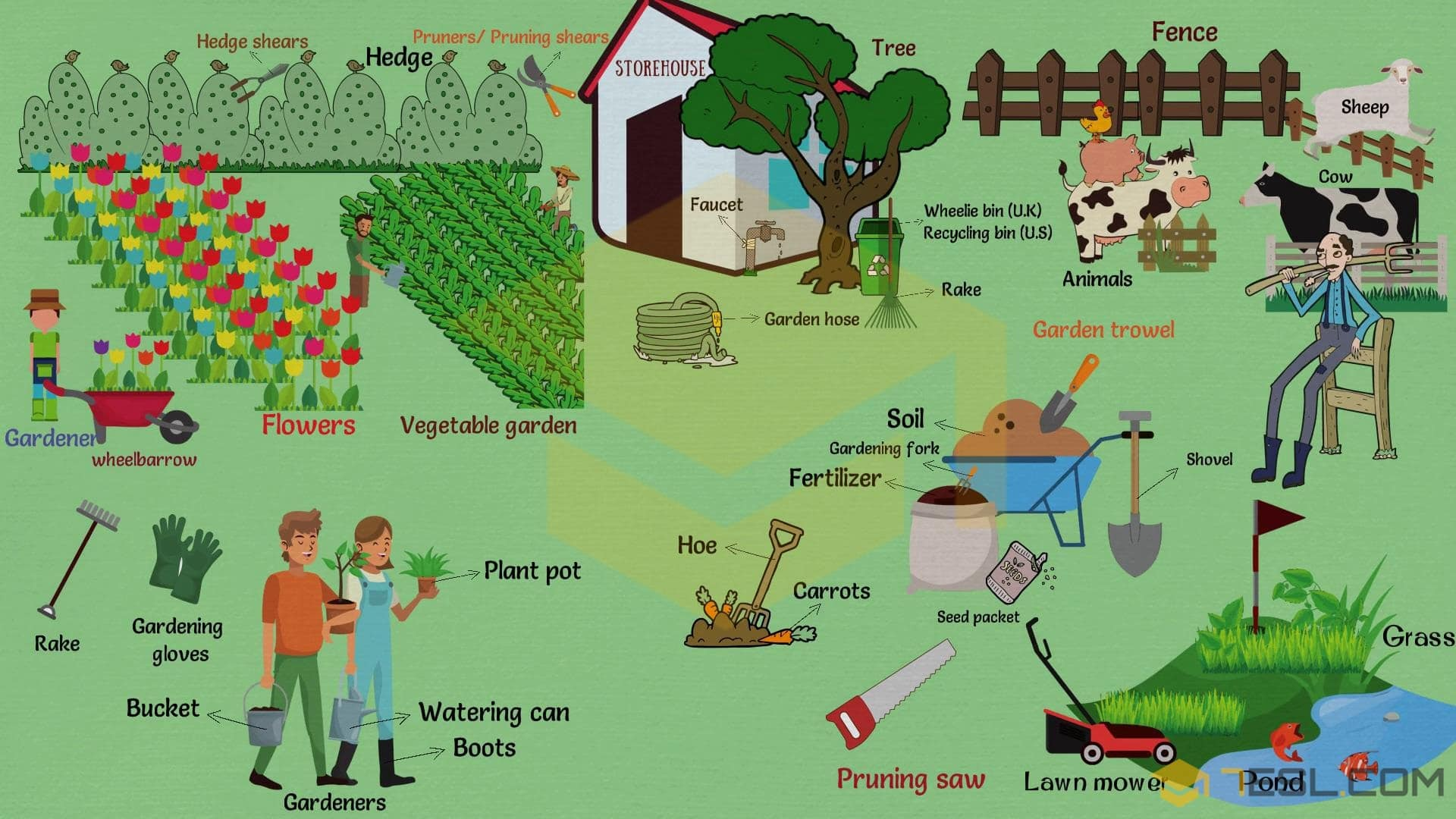 Garden Vocabulary: Useful Gardening Terms with Pictures