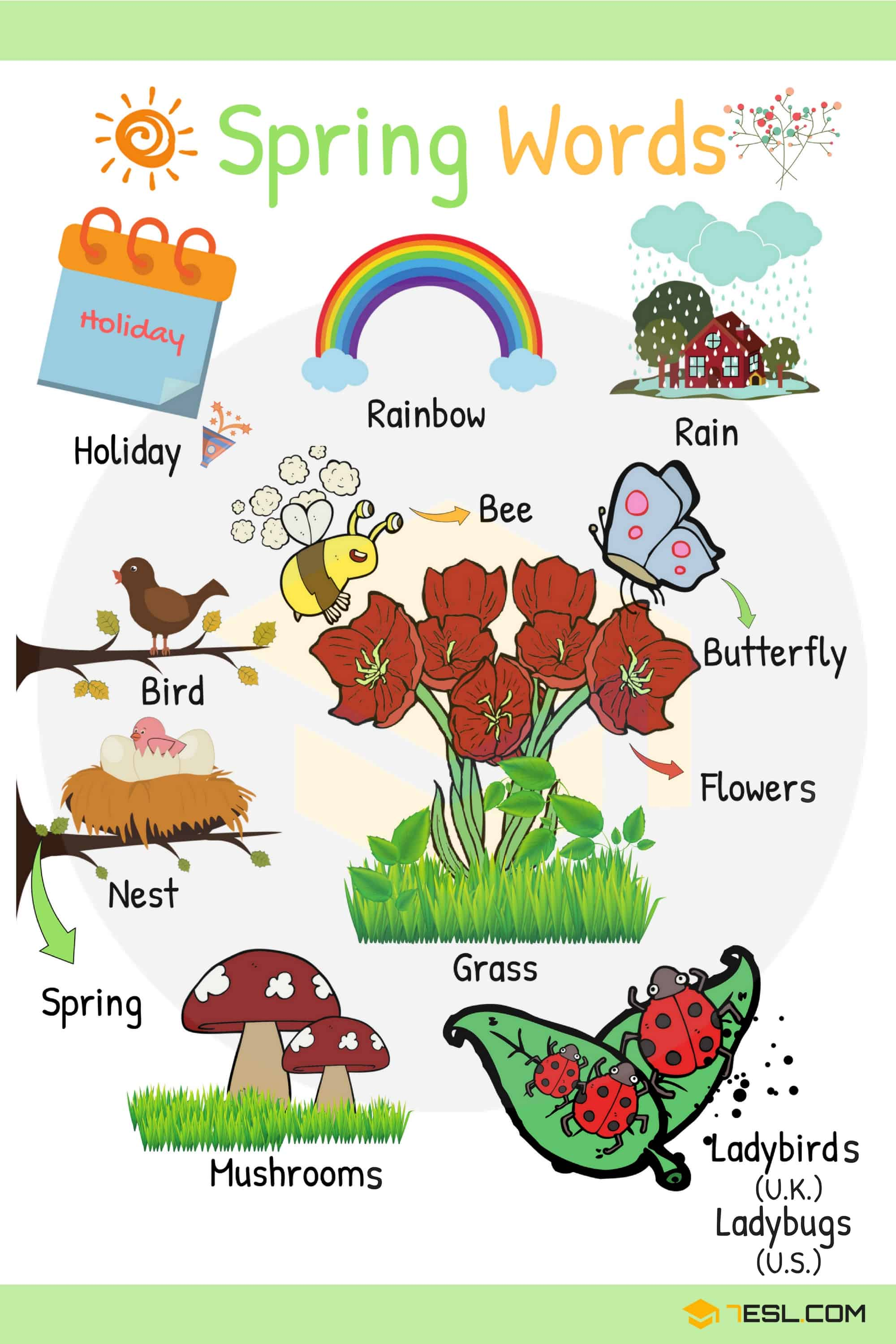 Spring Words: Learn Spring Vocabulary with Pictures