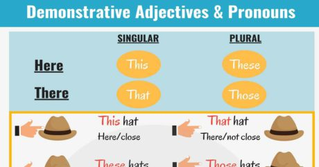 Demonstrative Pronouns   This, That, These, Those 19