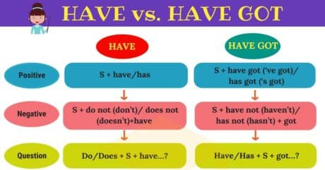 HAVE vs. HAVE GOT   The Difference Between HAVE & HAVE GOT 8