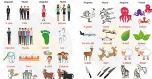 Irregular Plural Nouns | Grammar Rules, List & Examples