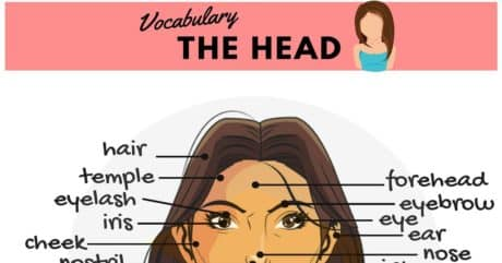 Parts of the Face Names | Human Head Vocabulary 100