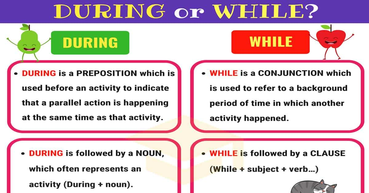 During vs While | Difference Between During and While 1