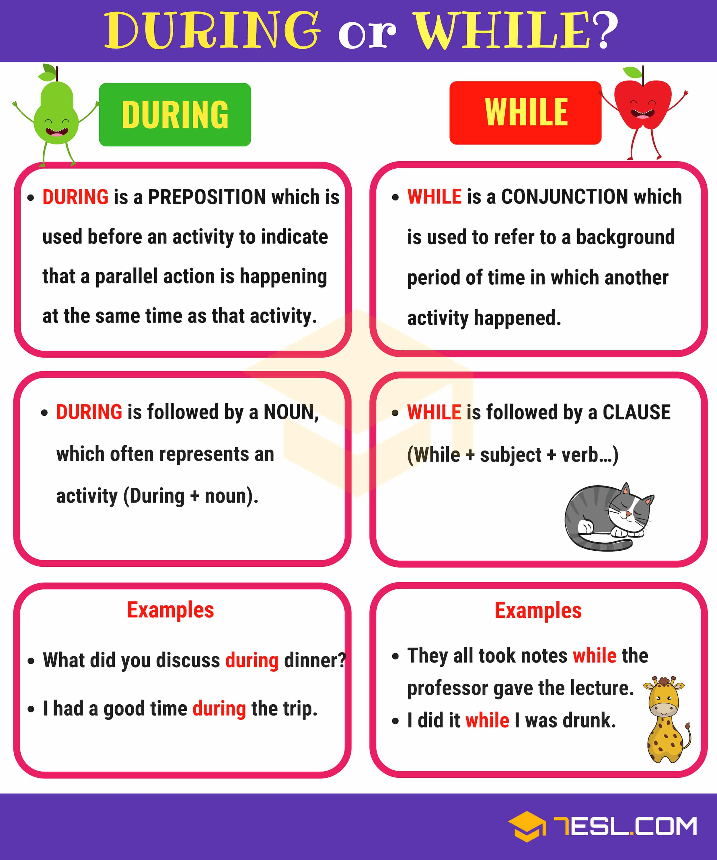 During vs While | Is During a Preposition?