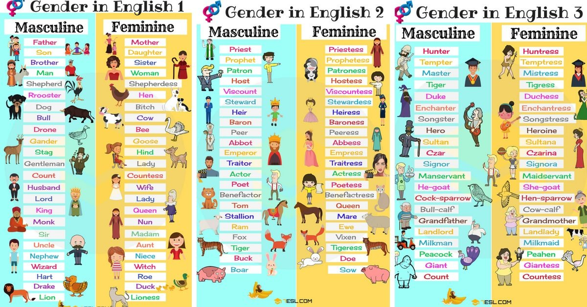 Gender Of Nouns  Masculine And Feminine List In English - 7 E S L