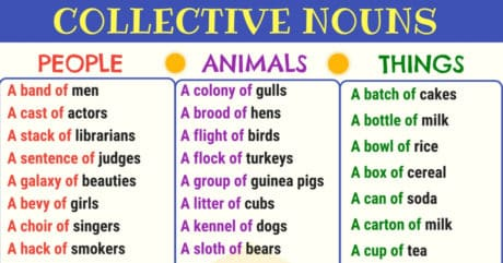 List of Collective Nouns for Animals, People and Things 9