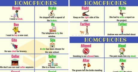 HOMOPHONES: 150+ Sets of Homophones in English 6