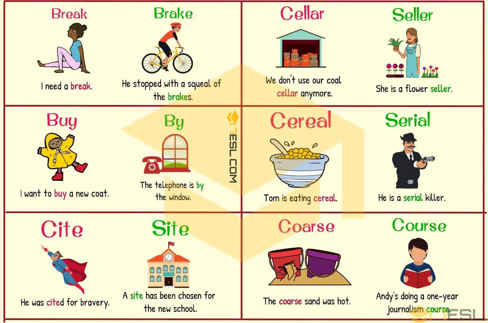 Homophones examples illustrated with pictures - Image 3