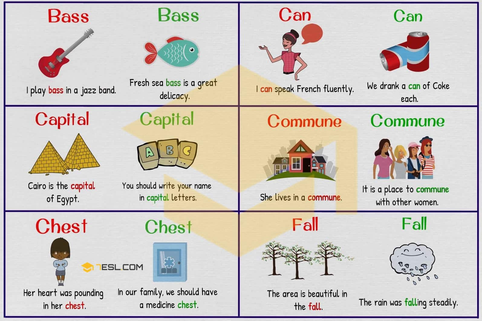 Homographs examples - image 2