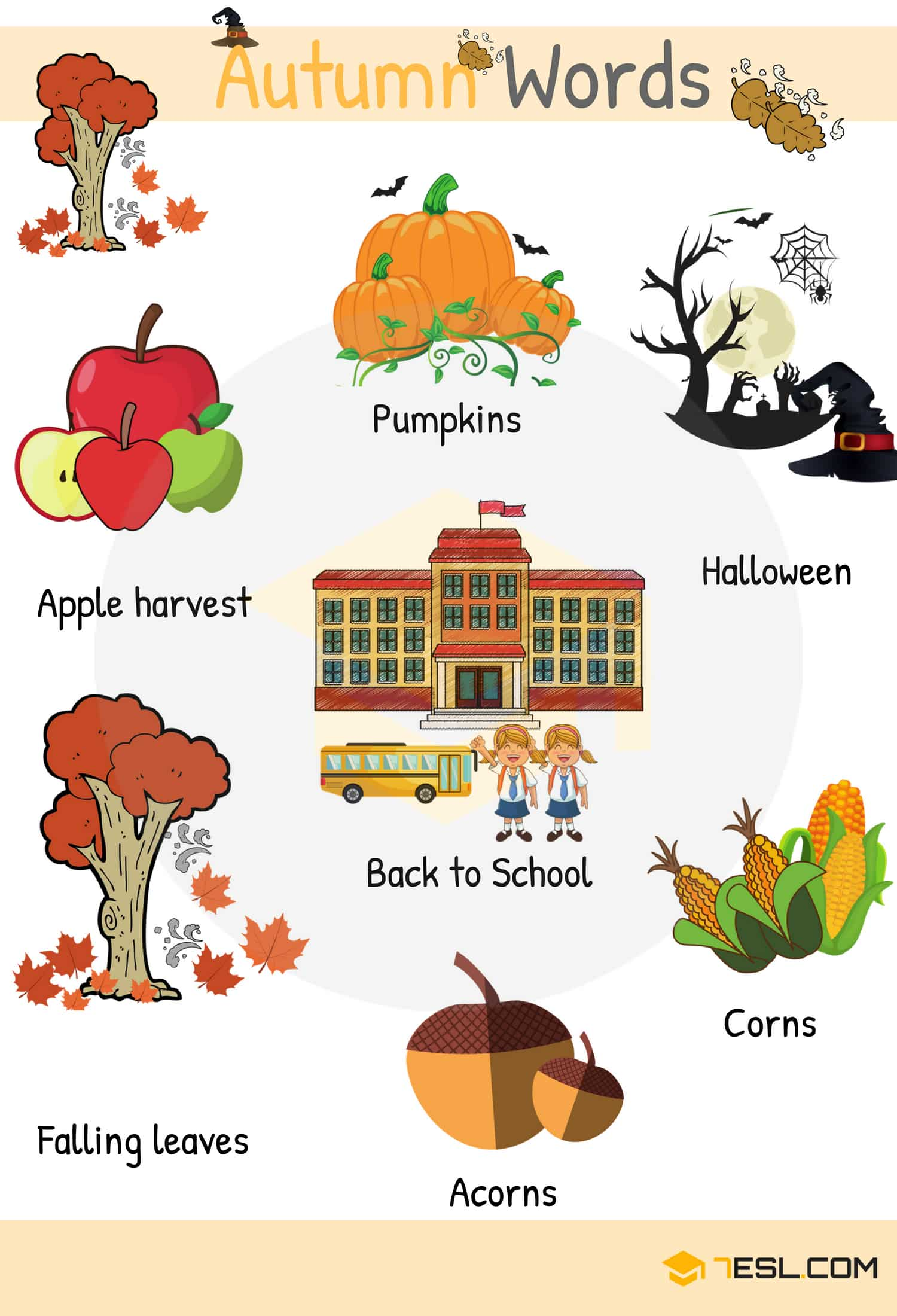 Autumn Words in English | Autumn Vocabulary with Pictures