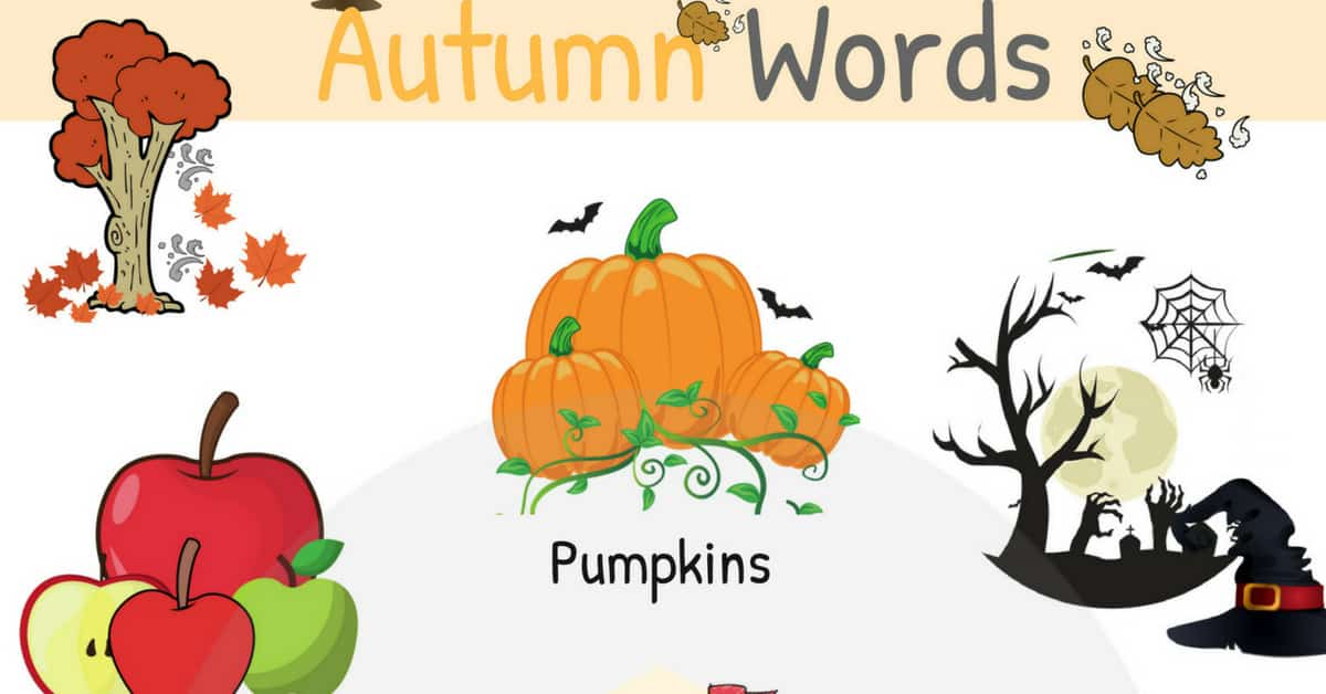 Autumn Words in English | Autumn Vocabulary with Pictures 1