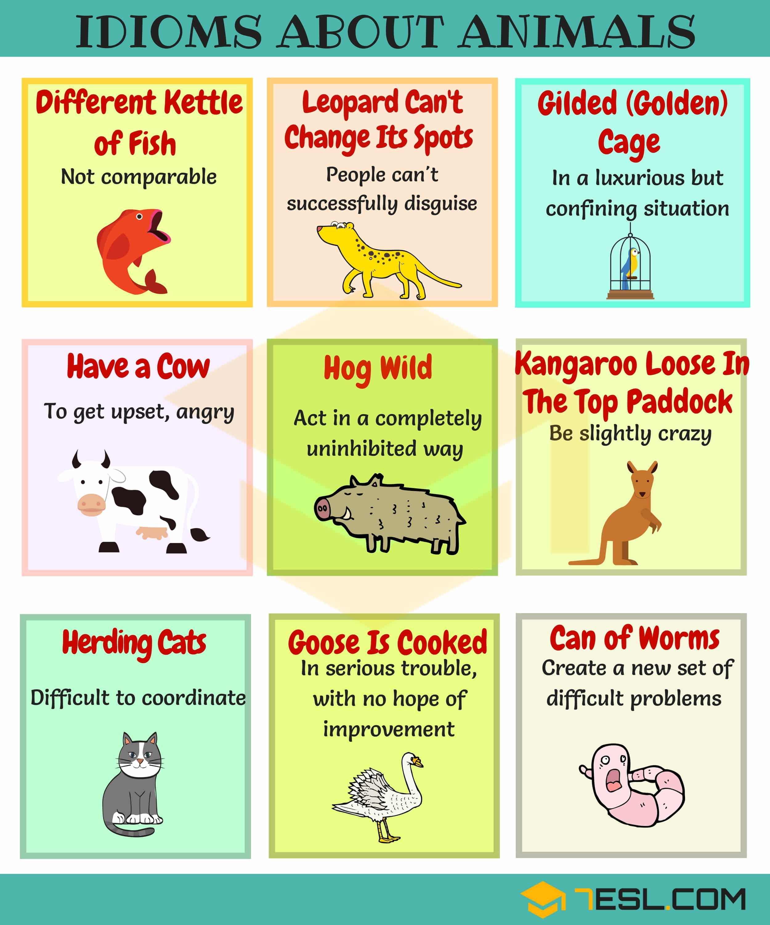 Common Nature Idioms in English - Image 3