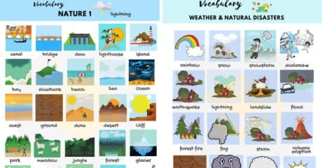 The Natural World Vocabulary in English with Pictures 1