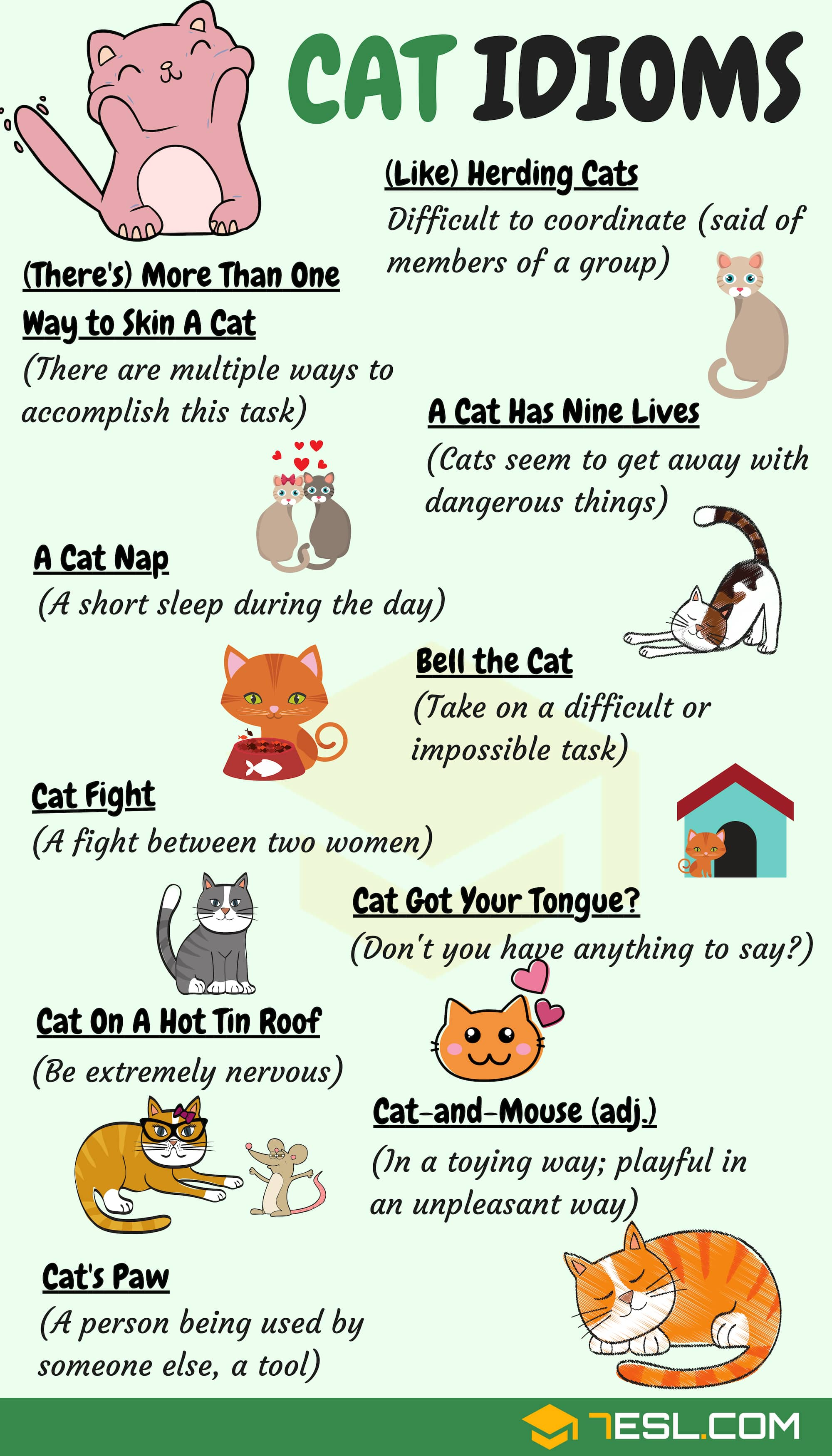 Cat Idioms 30 Useful Cat Idioms Sayings In English 7 E S L