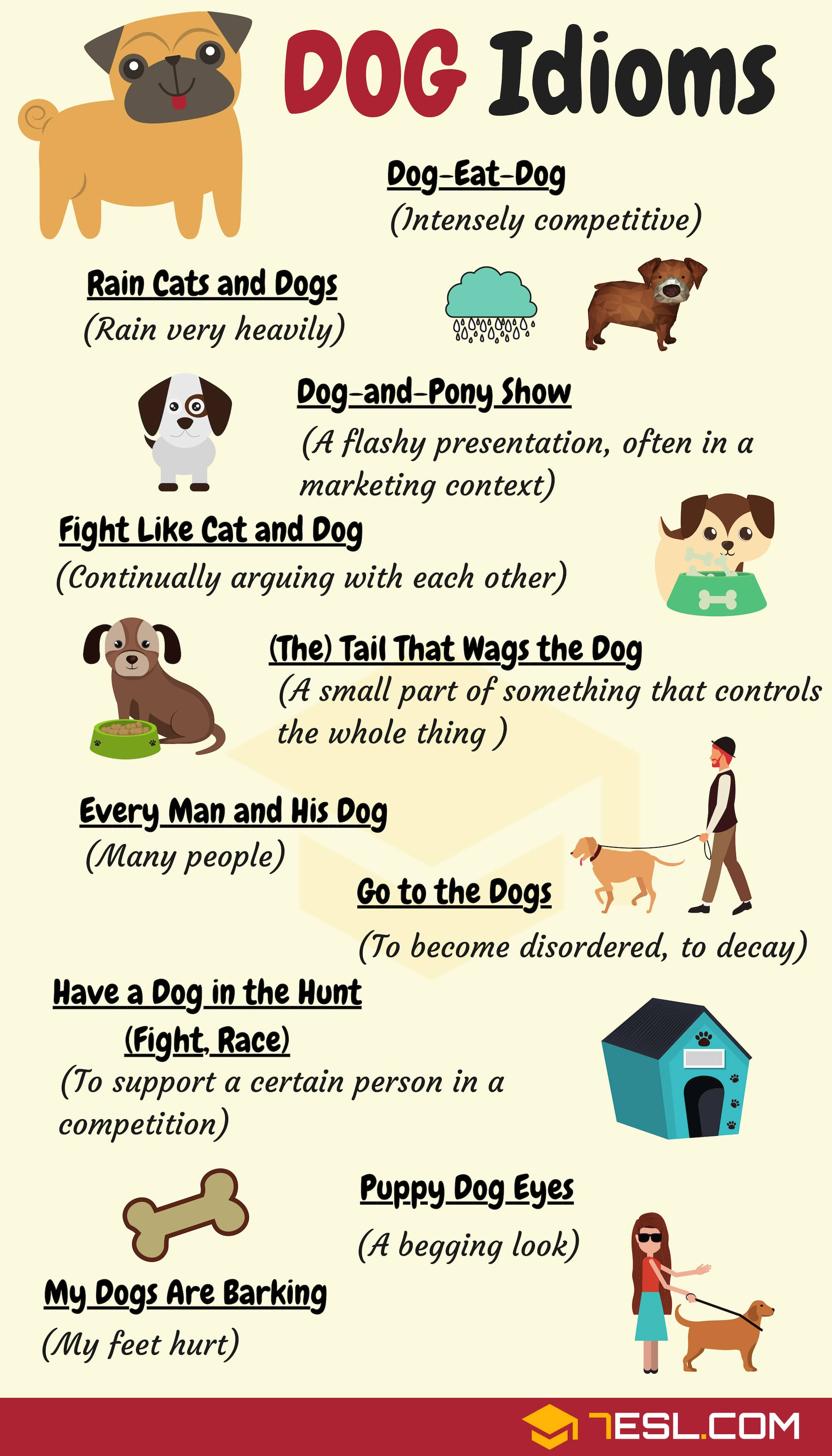 Common DOG Idioms with Meaning and Examples