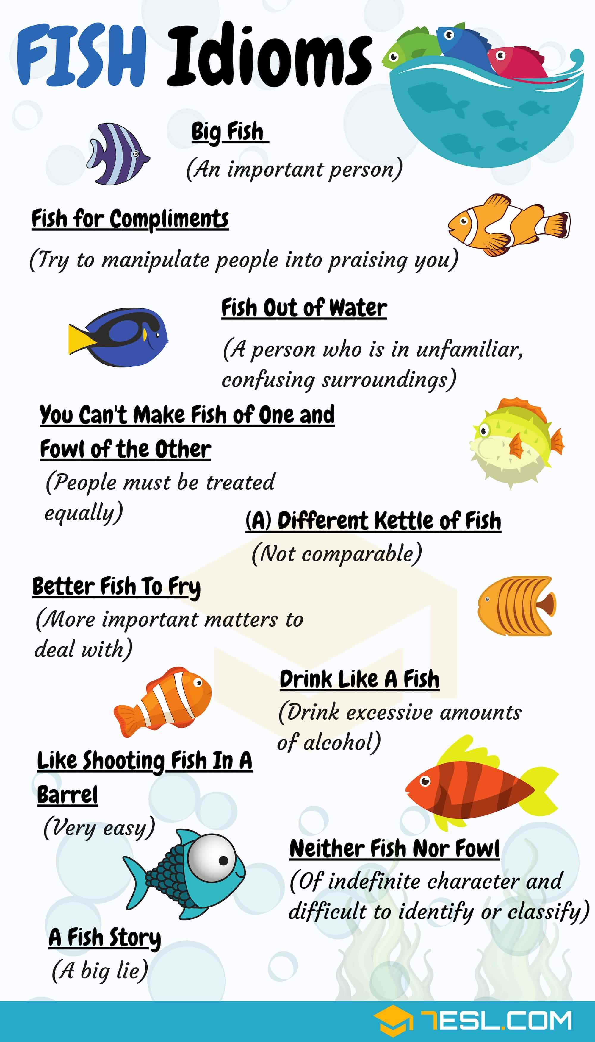 Fish Idioms with Picture