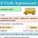 Subject Verb Agreement Rules | English Grammar