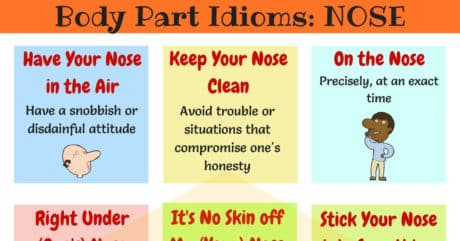 NOSE Idioms: 10 Useful Idioms with Nose in English 11