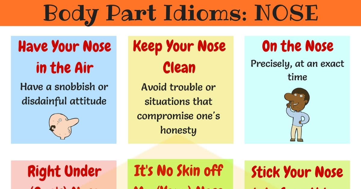 NOSE Idioms: 10 Useful Phrases & Idioms with Nose 1