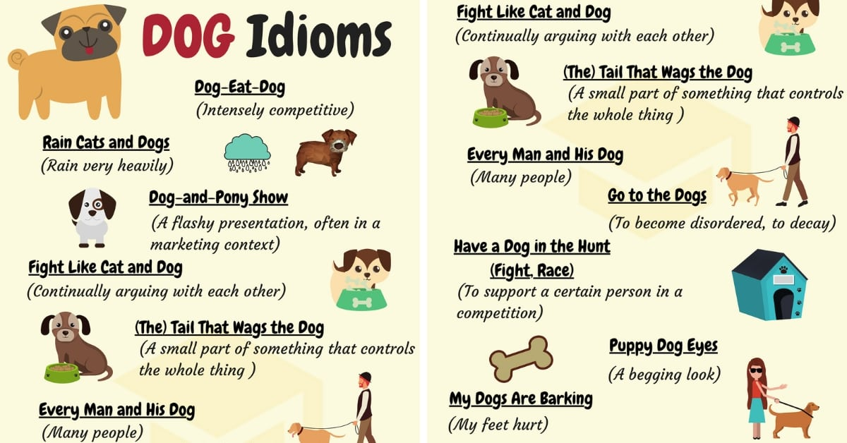 DOG Idioms: 16 Useful DOG Idioms and Sayings 4