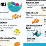FISH Idioms: 18 Commonly Used Fish Idioms with Examples