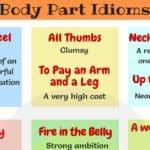 25 Idioms About Heel, Thumb, Neck, Leg, Shoulder