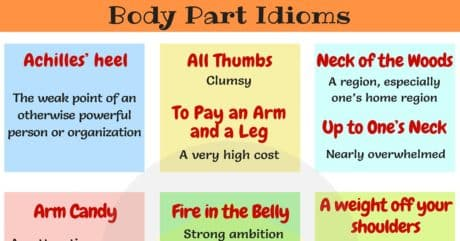 25 Idioms About Heel, Thumb, Neck, Leg, Shoulder 1