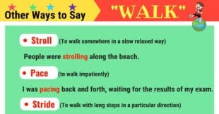 WALK Synonyms: 21 Synonyms for WALK in English