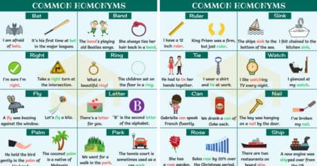 homonyms in english