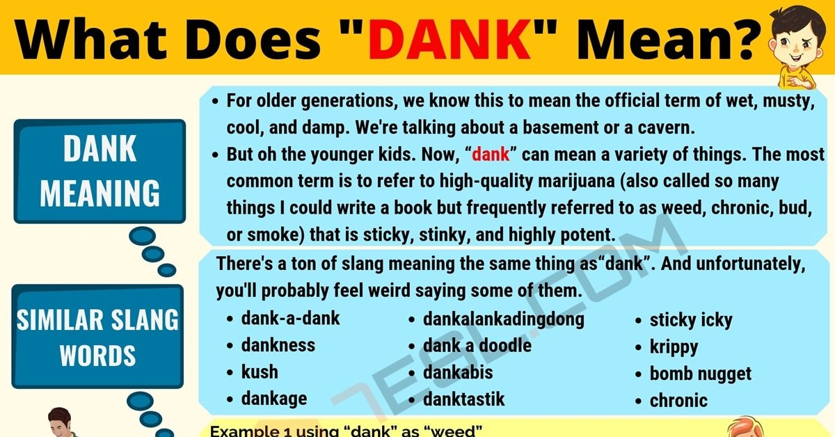 Dank Meaning: What Does Dank Mean? Useful Text Conversations 1
