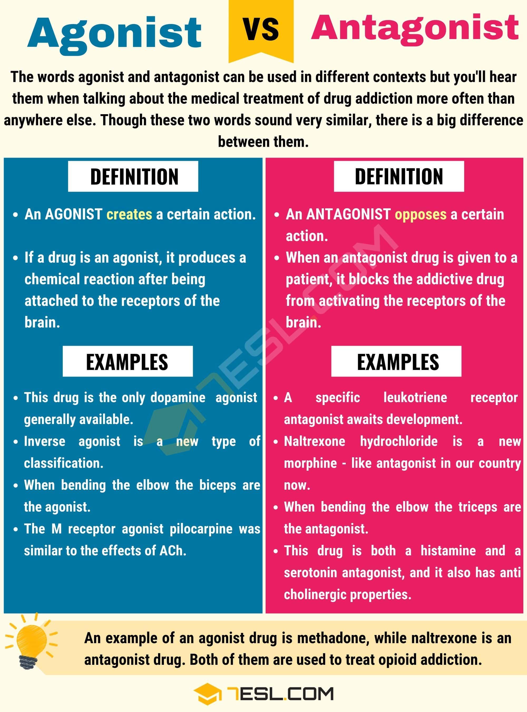 Dr. Laila m. Matalqah ph. D. Pharmacology pharmacodynamics 2.