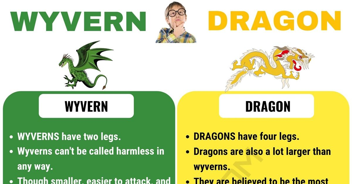 Wyvern vs Dragon