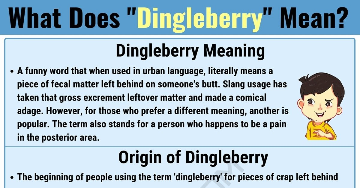 Dingleberry Meaning: What Does Dingleberry Mean? with Useful Examples 1