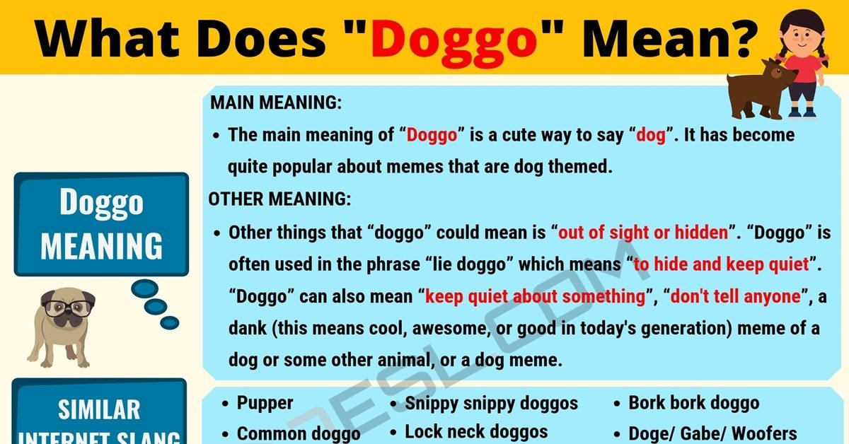 Doggo Meaning: What Does Doggo Mean? Useful Text Conversations 1