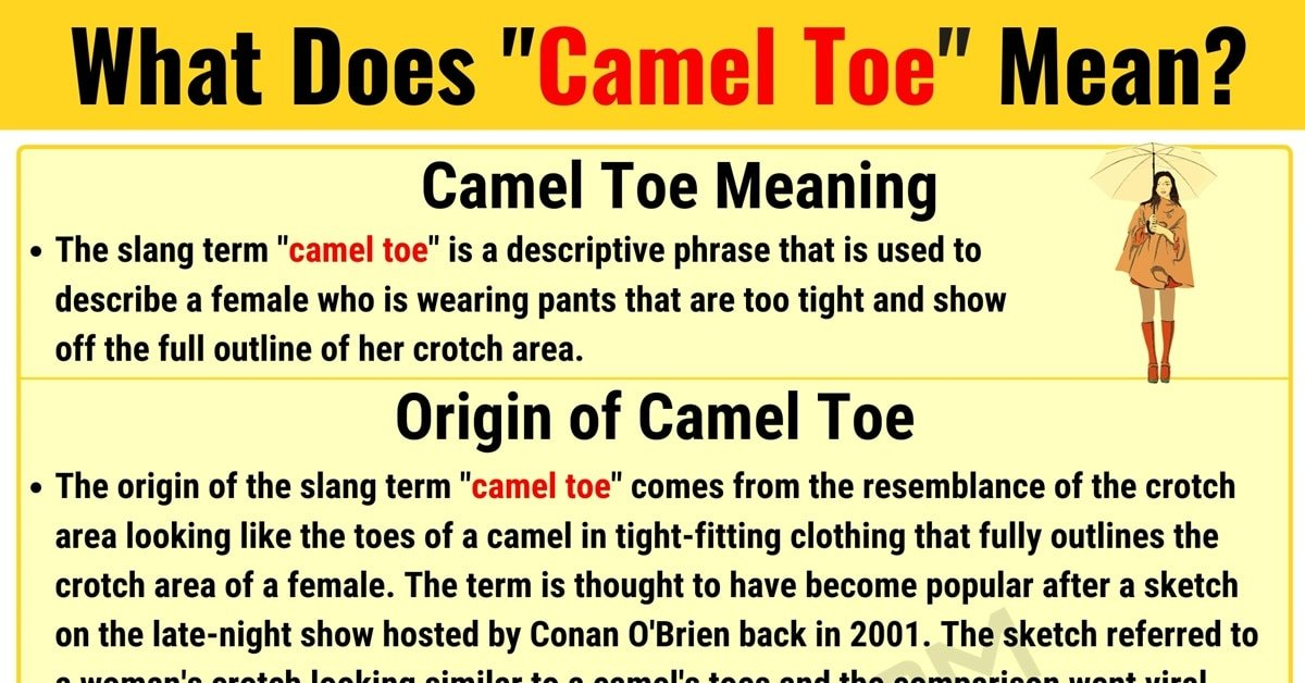"""Camel Toe Meaning: Learn the Definition of the Slang Term """"Camel Toe"""" 1"""