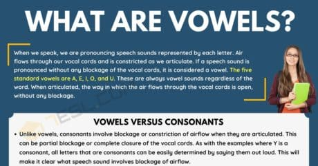Vowels: What They Are and Why We Have Them